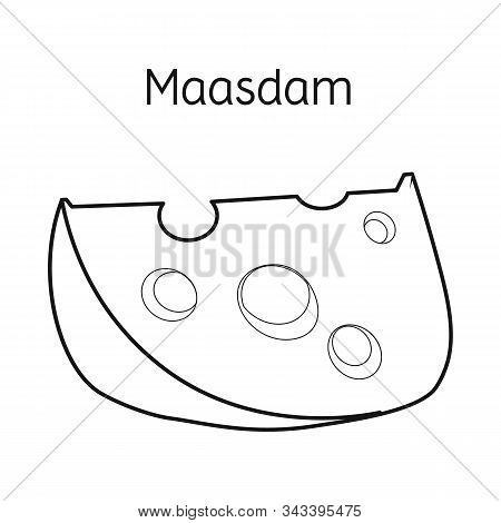 Isolated Object Of Cheese And Maasdam Symbol. Web Element Of Cheese And Piece Stock Vector Illustrat
