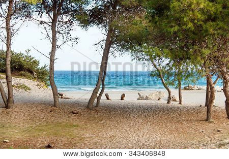 Dunes And Sea Near Alimini Lakes, Salento,puglia, Italy