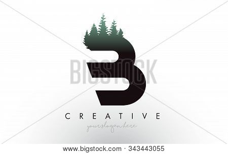 Creative B Letter Logo Idea With Pine Forest Trees. Letter B Design With Pine Tree On Topvector Illu