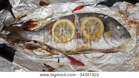 Cooked Gilthead Sea Bream