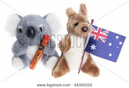 Soft Toy Koala