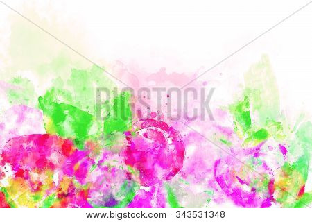 Abstract Watercolor Painting Of Pink Roses With Green Leaves On White Background