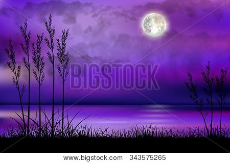 Illustration Of Tropical Beach At Night With Moonlight