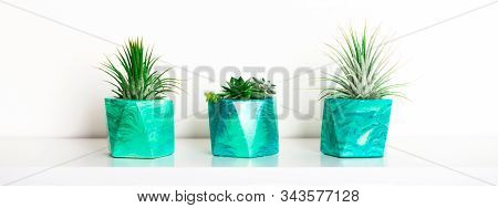 Collection Of Marbled Geometric Succulent Planters With Beautiful Tiny Succulent Plants On White She