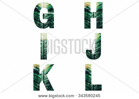 Wicker Font Alphabet G, H, I, J, K, L Made Of Fresh Green Palm Leaves With Sunlight.