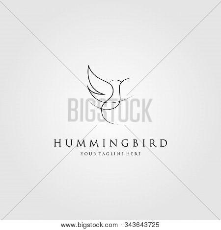Hummingbird Logo Colibri Line Art Vector Icon Emblem Design Illustration