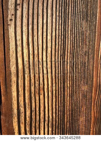 Aged Wood Texture, Cutaway Wood Background, Fibers