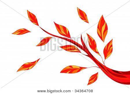 Rich orange autumn leaves