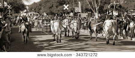 Fort Worth,texas, Jan.4,2020 - Longhorn Cattle Drive At The Fort Worth Stockyards Which Happens Ever