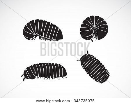 Vector Of Group Of Pill Millipede Worm(oniscomorpha) Isolated On A White Background. Worm Icon Or Lo