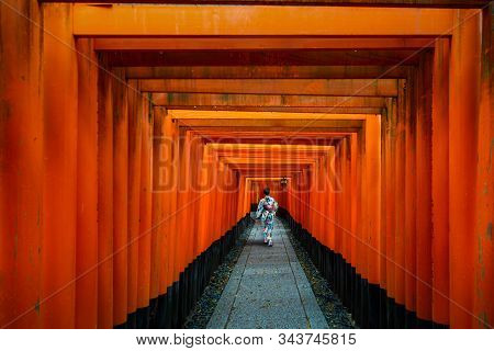 Geishas Walking And Sightseeing Among Red Wooden Tori Gate At Fushimi Inari Shrine In Kyoto, Japan.