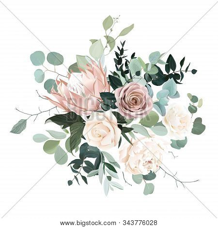 Silver Sage And Blush Pink Flowers Vector Design Bouquet. Beige Protea, Creamy And Dusty Rose, White