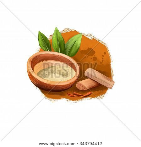 Chandan - Sandalwood Ayurvedic Herb Digital Art Illustration With Text Isolated. Healthy Organic Pla