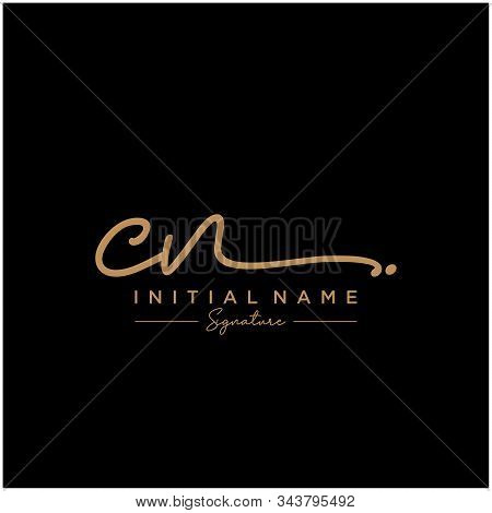 Letter Initial Cn Signature Logo Template Vector