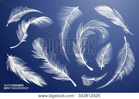 White Realistic Bird Feathers. Vector Flying Feathers Set With Transparency. Clipart Collection. Plu