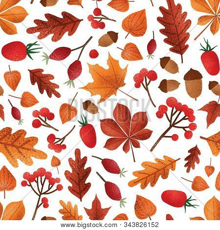 Autumn Leaves And Berries Vector Seamless Pattern. Fall Season Foliage With Acorns Wallpaper Design.