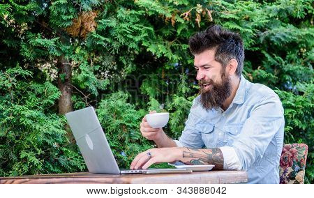 Cafe Ensuring Comfortable Internet Use. Bearded Man Drinking And Browsing The Web In Cafe. Hipster E