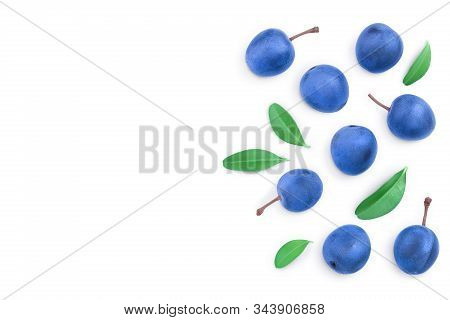 Blackthorn Or Sloe Berries With Leaves Isolated On White Background With Copy Space For Your Text. T