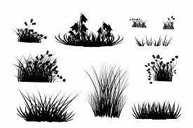 Set Of Black Grass Silhouettes Isolated On White Background. Collection Of Meadow Grass And Herbs Si
