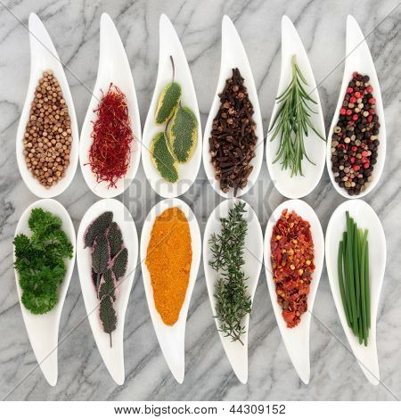 Spice and fresh herb selection in leaf shaped white porcelain dishes over marble background.