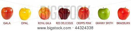 Assortment Of Apples