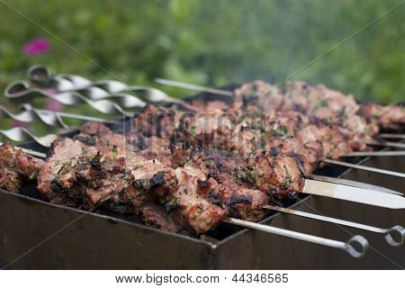 Meat on the grill