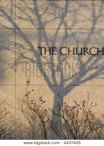 Tree Shadow On The Church