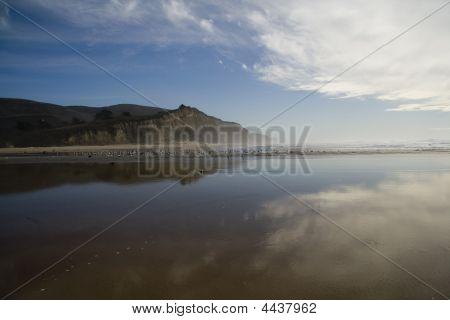 Coast, Half Moon Bay
