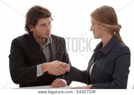 Business Partners Shaking Their Hands