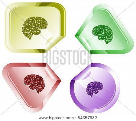 Brain. Stickers. Raster illustration.