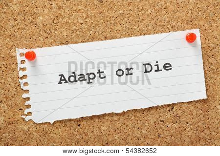 Adapt or Die typed on a piece of lined paper and pinned to a cork notice board. A concept for change management and evolving your business to avoid failure and achieve growth. poster