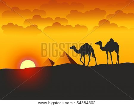 Camels And Pyramids - Illustration