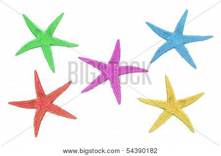 five starfish in different colors pink green blue red and yellow on a white background poster