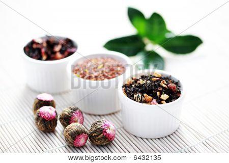 Various Tea Leaves