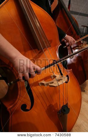 Woman Playing Cello in Symphony