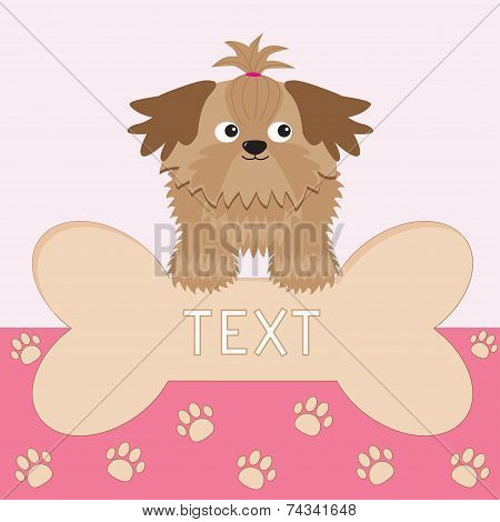 Little glamour tan Shih Tzu dog and big bone. Card. Paw print. Vector illustration. poster
