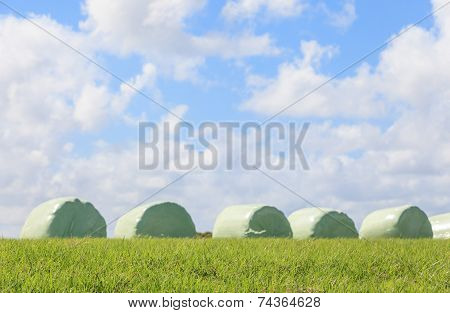 The Blurry Scene Of Silage And Sky Background.