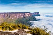 View from the Roraima tepui on Kukenan tepui at the fog - Venezuela Latin America poster