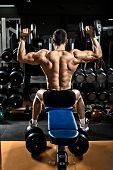 very brawny guy bodybuilder execute exercise with dumbbells on deltoid muscle shoulder poster