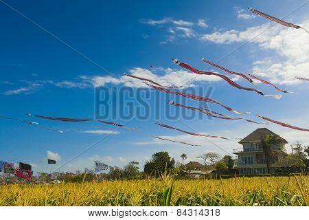 Huge Balinese kites fly soar in the sky