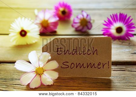 Sunny Label With German Text Endlich Sommer Means Happy Summer With Cosmea Blossoms