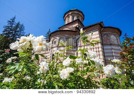 White Roses Flowers In Front Of Cozia Monastery Church On A Sunny Summer Day