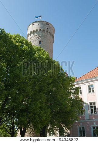 Tallinn Capital of Estonia Eesti Northern Europe poster