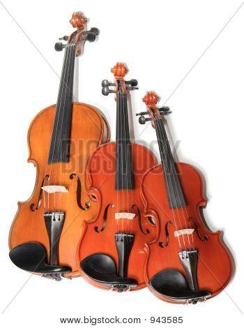 Violins Trio