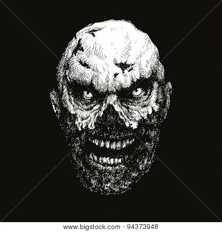 zombie head hand drawn. vector illustration