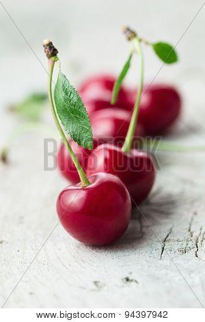 Fresh organic sour cherry, ripe, deep red cherry