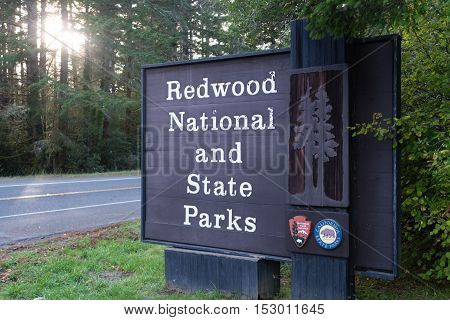 A sign designating the boundary of Redwood National Park