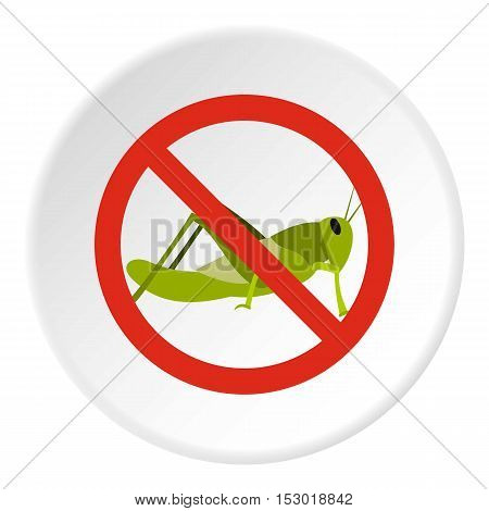 Prohibition sign grasshoppers icon. Flat illustration of prohibition sign grasshoppers vector icon for web