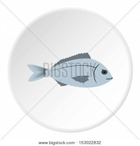 Saltwater fish icon. Flat illustration of saltwater fish vector icon for web