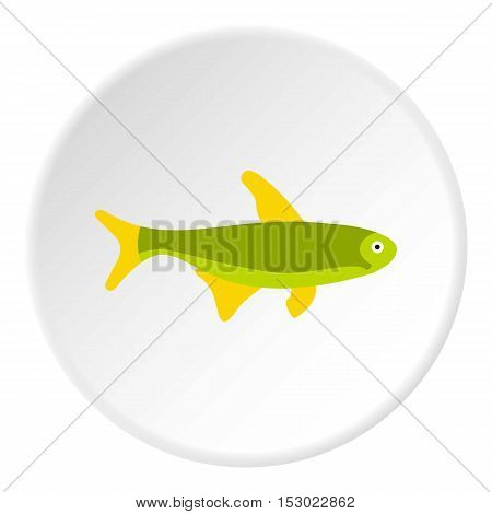 Trout fish icon. Flat illustration of trout fish vector icon for web